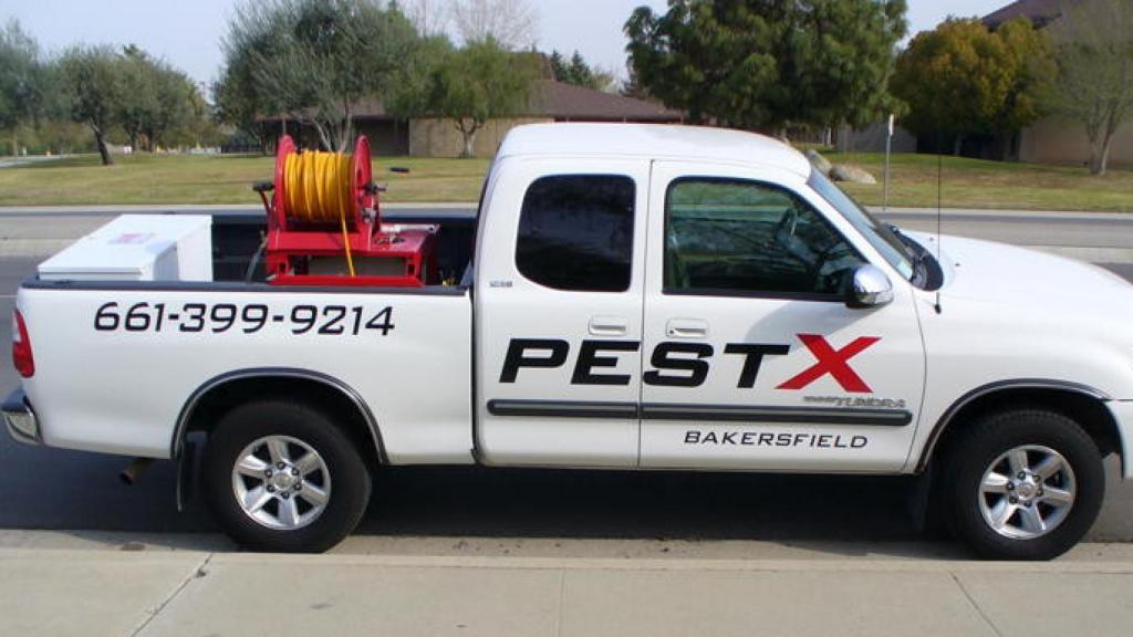 Bakersfield Pest Control Company | Pest Control Companies Bakersfield | PESTX