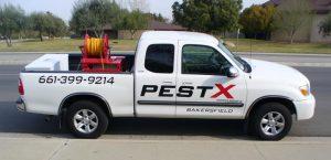 Bakersfield Pest Control Companies, #1 Pest Control Bakersfield, PESTX
