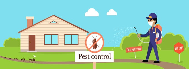 Pest Control Bakersfield, #1 Bakersfield Pest Control Company, PESTX