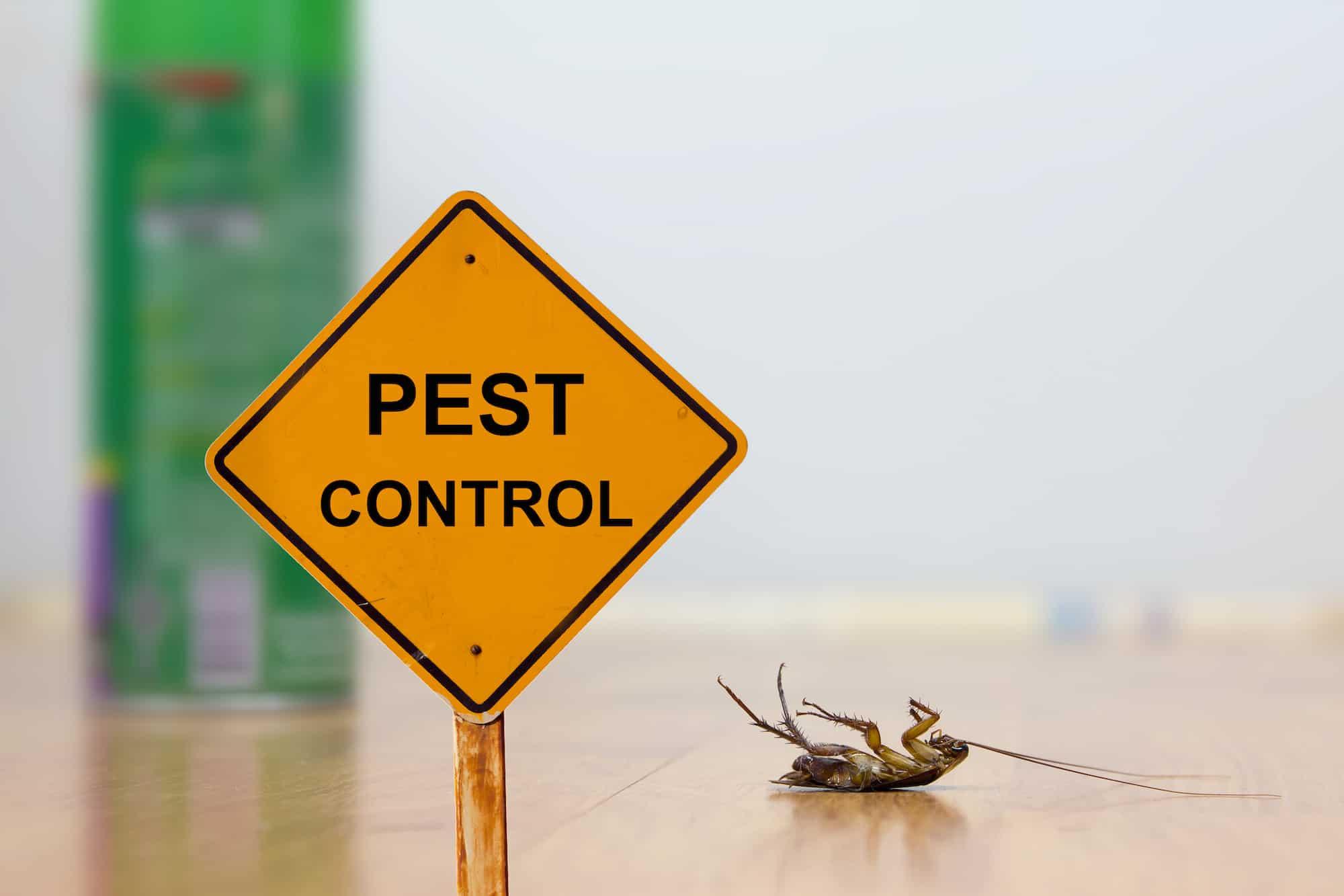 Bakersfield Pest Control, #1 Pest Control company Bakersfield, PESTX